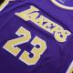 Swingman LeBron James #23 Los Angeles Lakers Jersey By Nike Purple