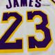Swingman LeBron James #23 Los Angeles Lakers Jersey By Nike White