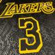 Swingman Anthony Davis #3 Los Angeles Lakers Jersey By Nike Black